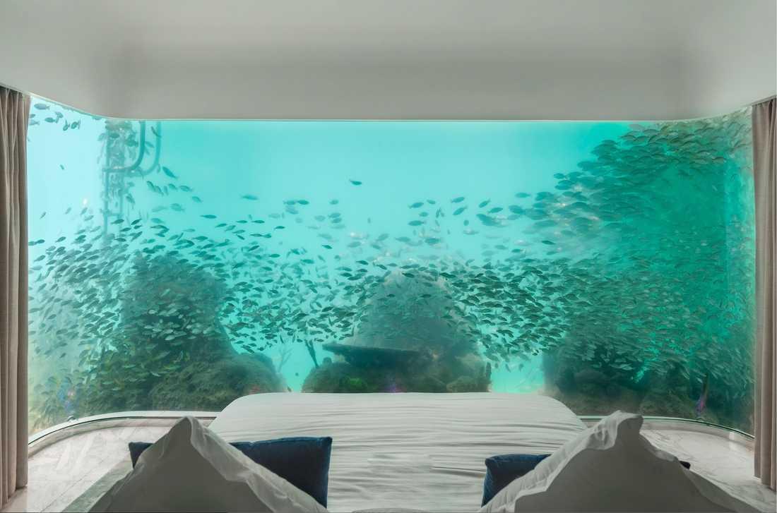 """De så kallade """"Seahorse villas"""" har undervattensrum."""