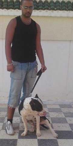 Linköpingsbon Hamid, 21, befinner sig i Sousse i Tunisien.