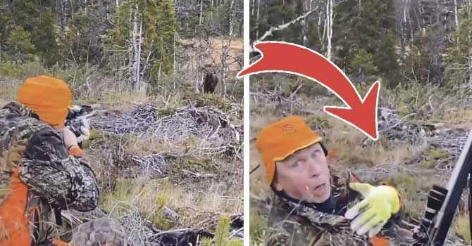 Mats Isaksson, 59, jagade älg utanför Åre, fick han syn på en älgtjur några hundra meter bort. Han hade ett bra skottläge och sköt.
