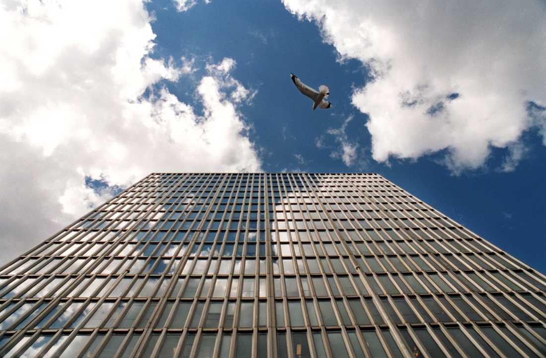 Fåglar tror att spegelbilden i glastäckta skyskrapor är det verkliga föremålet.