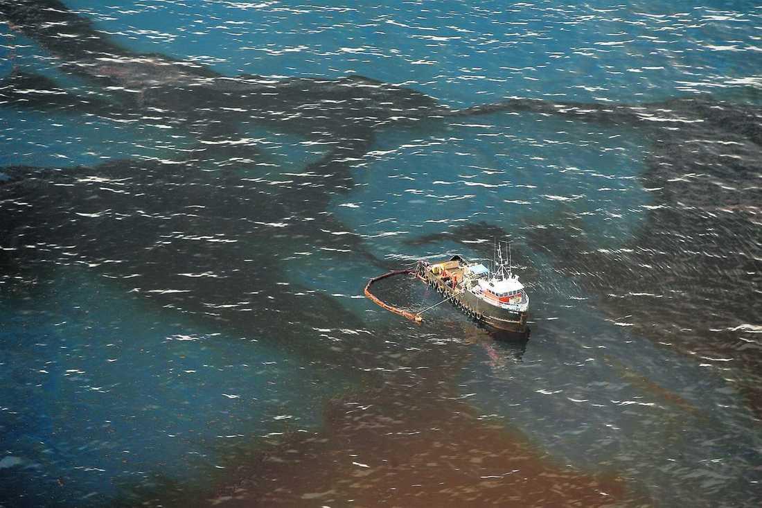 risken: 16 miljoner liter/dag I interna BP-dokument som nu offentliggjorts framgår att det finns en risk för att dubbelt så mycket olja som i dag ska börja läcka ut i Mexikanska golfen. På bilden försöker ett fartyg skumma av olja från vattnet nära den förstörda plattformen Deepwater Horizon.