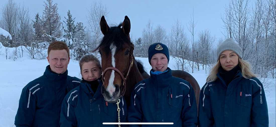 Stall Philip: Patrik Fernlund, Marlene Matzky, dyrgripen Hefner Am, som köptes för 1,6 miljoner kronor på Wenngarns auktion i somras, Jasmine Ising och Malin Widing.