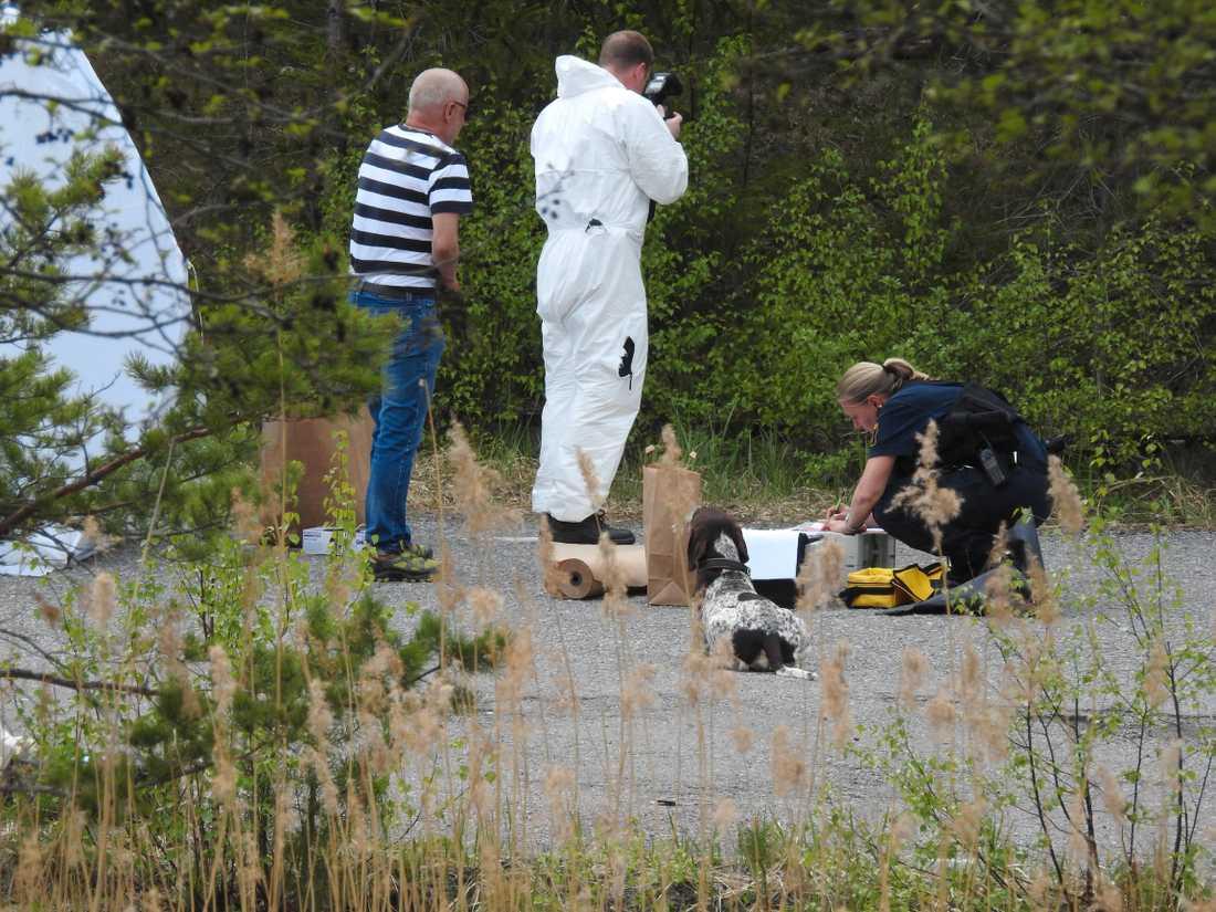 Samma personer ska också ha genomfört mordet i Järfälla i helgen då en 18-årig man sköts till döds i ett skogsområde.