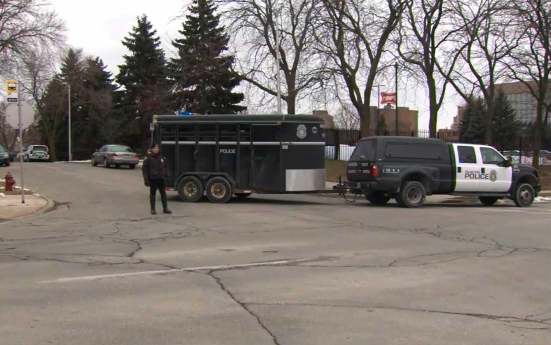 Flera personer har skjutits ihjäl på ett bryggerikontor i Milwukee i USA, rapporterar lokala medier.