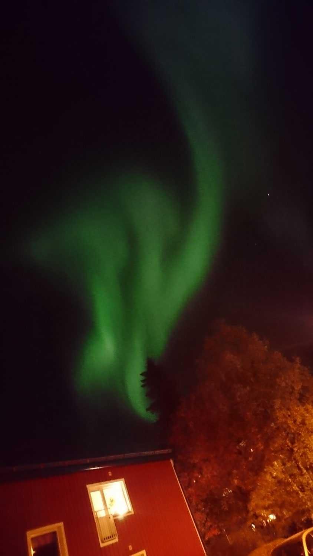 """""""Luleå bjöd på ett mäktigt norrsken i kväll. De här bilderna är utanför min lägenhet. Tyvärr fångar min mobilkamera bara upp de starkaste färgerna, men i verkligheten var hela himlen grön!"""", hälsar Jennifer Lundin."""
