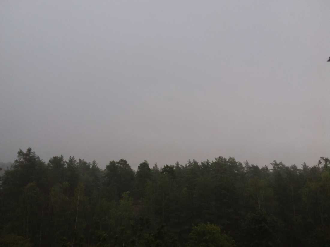 Mörk himmel ovanför Kolmården.