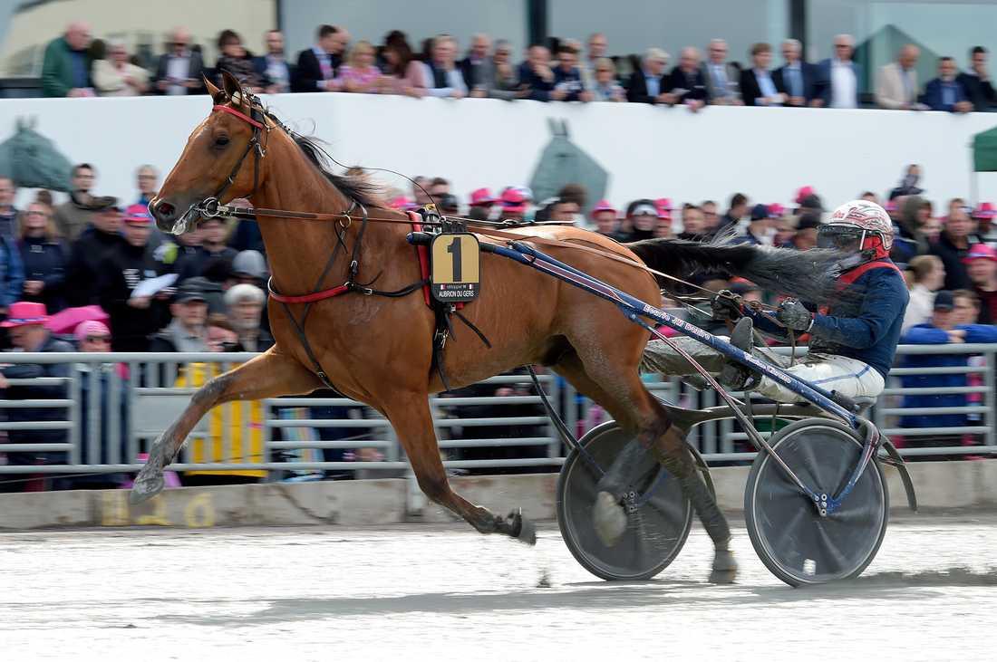 Aubrion du Gers slutade tvåa i Elitloppet i maj.