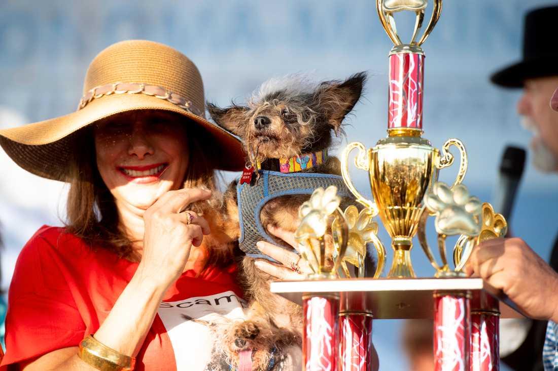 Här är världens fulaste hund 2019 – Scamp the Tramp tillsamman med mate Yvonne Morones.