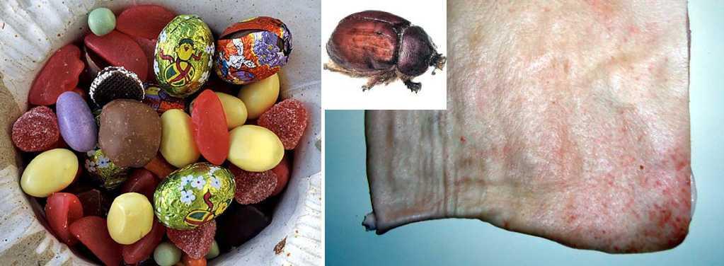 Påskgodiset innehåller bland annat gelatin, som utvinns av slaktavfall som svinsvål, och färgmedel som utvinns från  kochenillsköldlusen