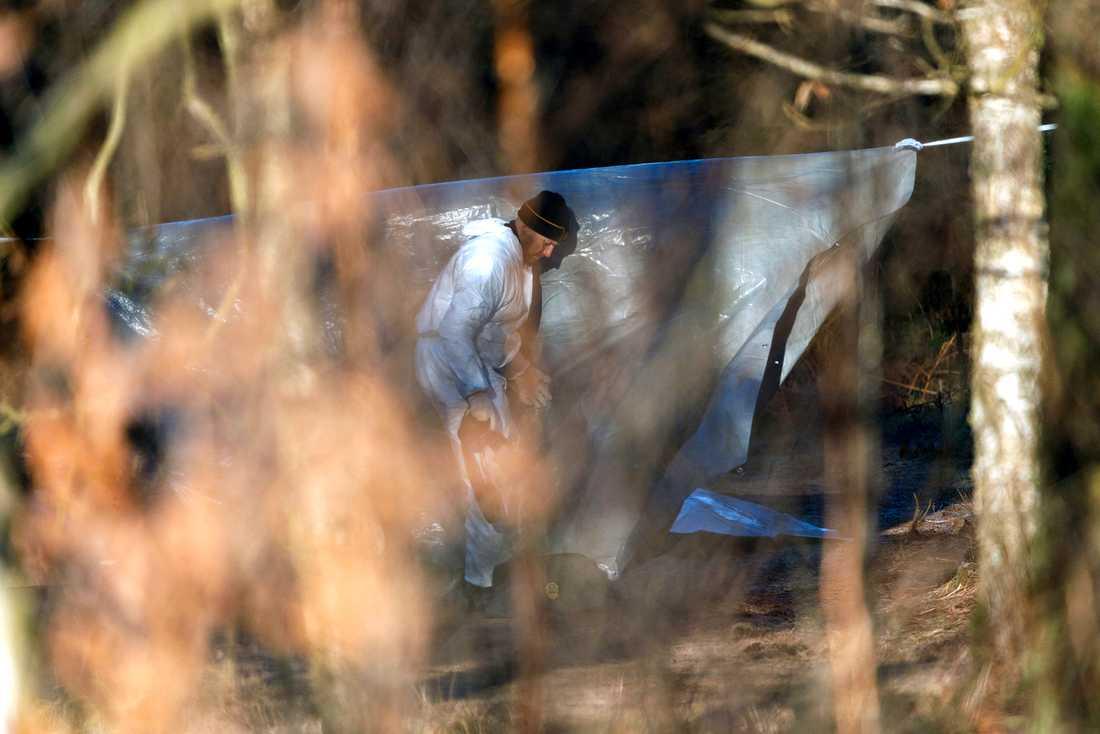 En man har hittats dör i ett skogsområde utanför Halmstad. Polisen misstänker mord.