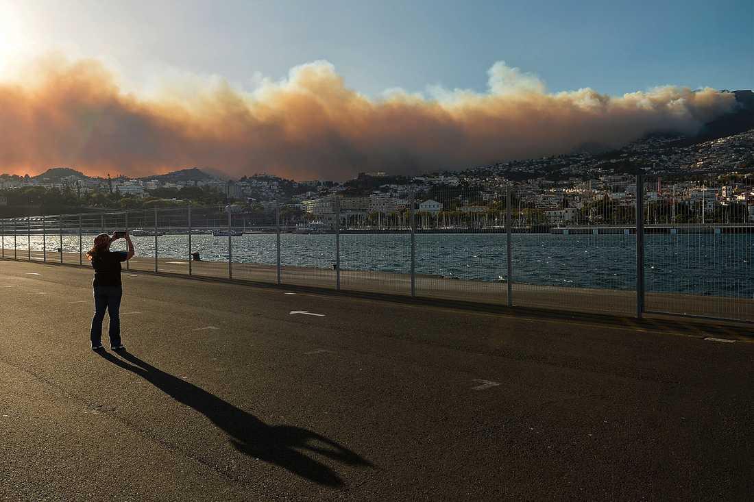 Brand utanför Funchal på Madeira, Portugal