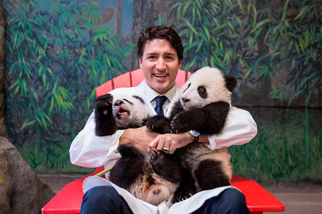 Kanadas premiärminister Justin Trudeau tog sitt parti från det sämsta resultatet någonsin till att bilda majoritetsregering fyra år senare. Det finns mycket socialdemokratin kan lära av hans positiva kampanj som stått emot många tuffa attacker.