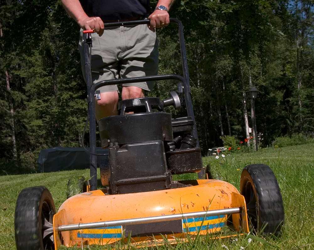 Motorgräsklipparen är den värsta olycksboven i trädgården.