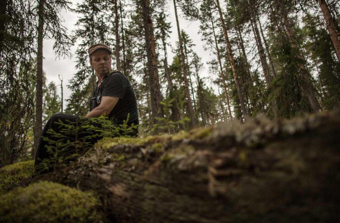 """""""I början tänker man att det finns skog överallt. Men när man lär sig vad som är skog och vad som inte är skog och när man börjar förstå hur ekosystemet fungerar"""", säger Sebastian Kirppu."""