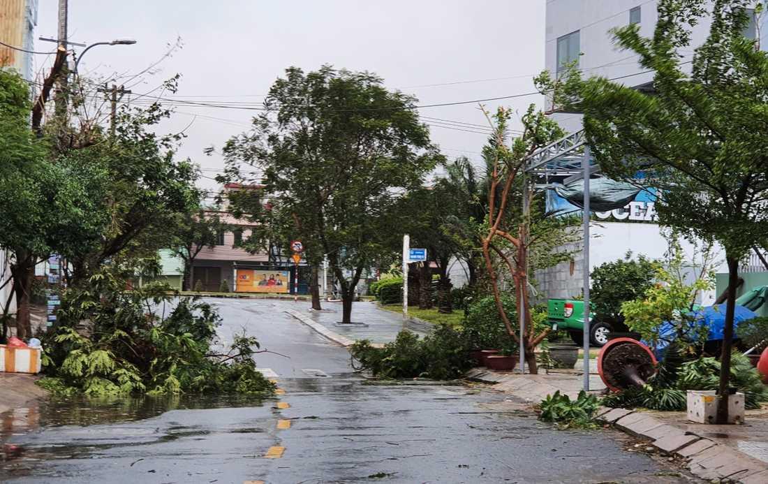 Tyfonen Molaves kraftiga vindar river ned träd och sliter av hustak. Bilden är tagen i Danang på onsdagen.