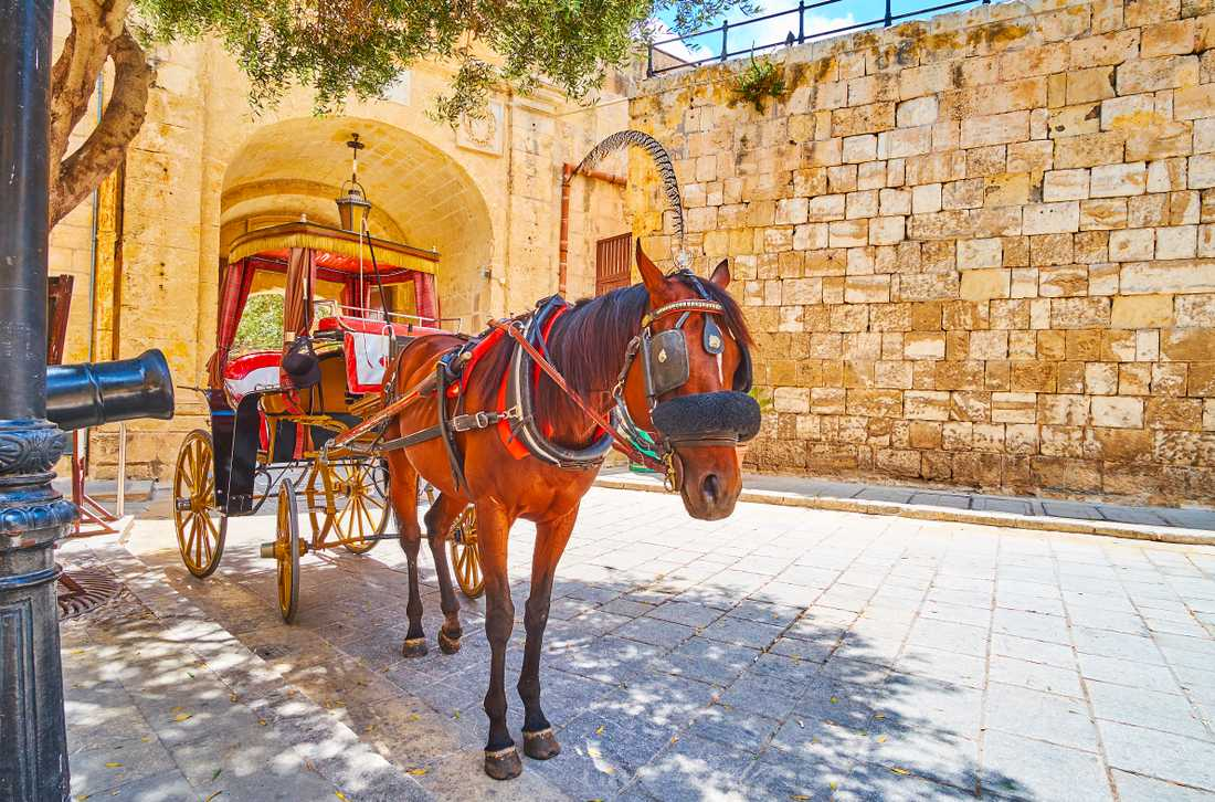 Karozzins har länge funnits på Malta, men nu har nya regler införts.