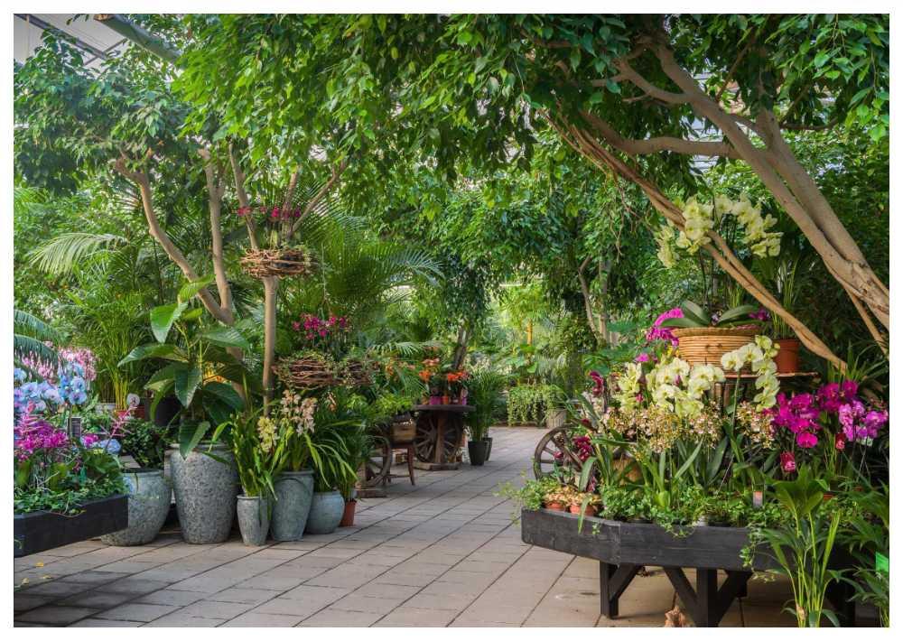 Hos Åsby hem och trädgård i Hallstahammar kan man ta en fika vid djungeldammen.