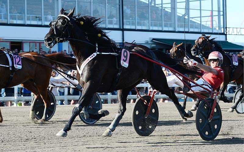 Trots att den norske stjärnhästen ströks inför Åby Stora Pris senast, så blir han klar favorit på V75