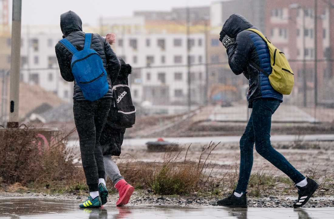 Motvind och regn på tvären i Västra Hamnen i Malmö på lördagen.