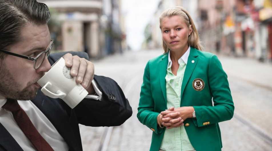 Att rikta enbart negativt fokus mot SD och Jimmie Åkesson är att nedgradera nästan var femte väljare som anser att andra partier än SD bär ansvaret för en undfallenhet för vår tids största utmaningar, skriver Sophia Jarl (M).