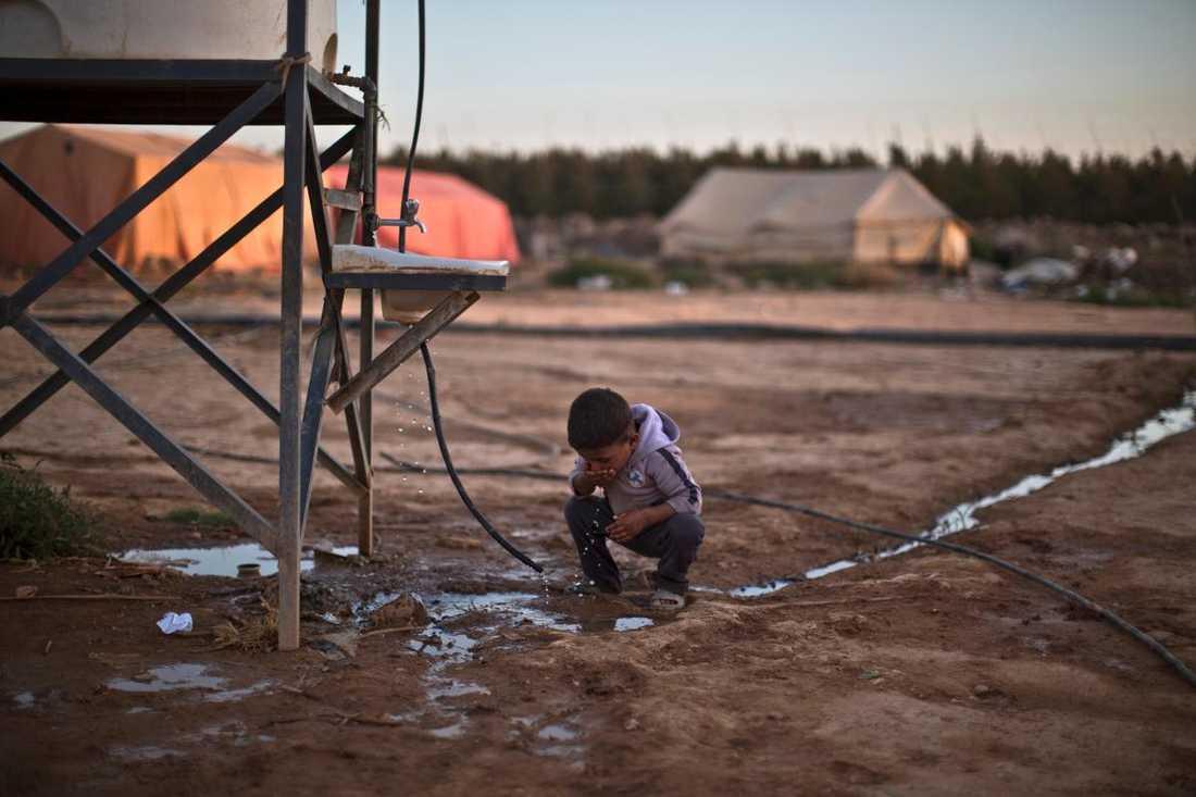 Flest från afghanistan Migrationsverket uppskattar att Sverige kommer att ta emot 30 000 ensamkommande flyktingbarn bara i år - det är 7 000 fler än som sökte asyl i hela EU förra året.