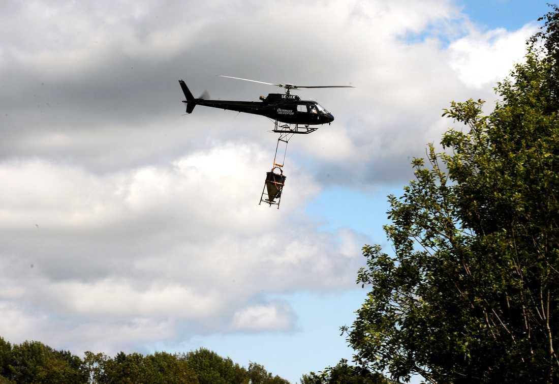 Myggbekämpning med helikopter i Österfärnebotrakten. Arkivbild.