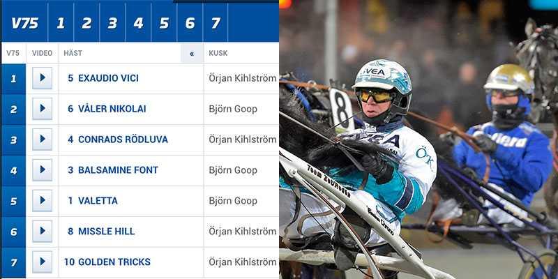 Örjan Kihlström och Björn Goop tog hem alla lopp på V75 på Solvalla.