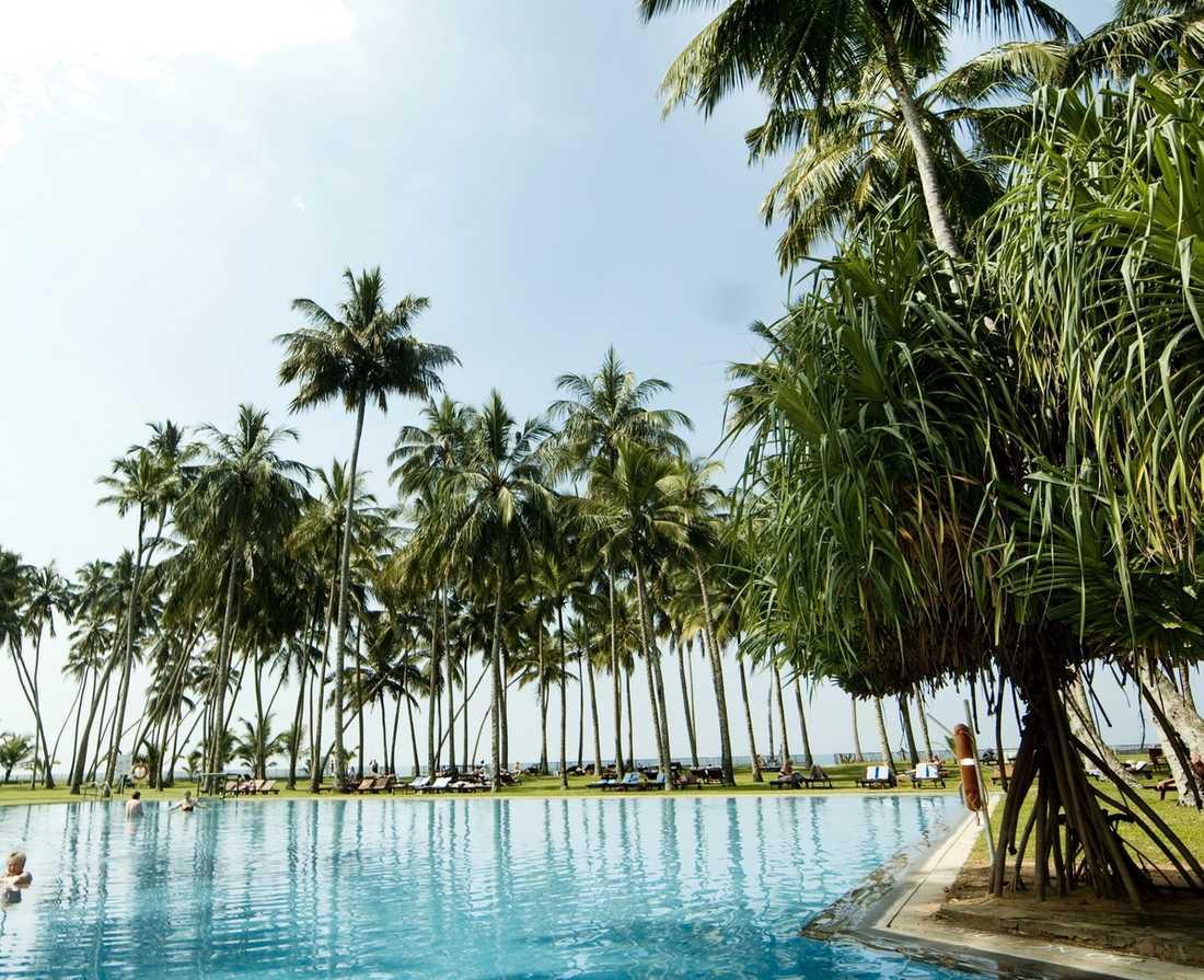 Hotellkomplexen gömmer sig finurligt utan att störa den smala strandremsan som slingrar sig längs sydvästkusten. Ofta, som här i Wadduwa beach, får poolen och en stor trädgård agera ingemansland.