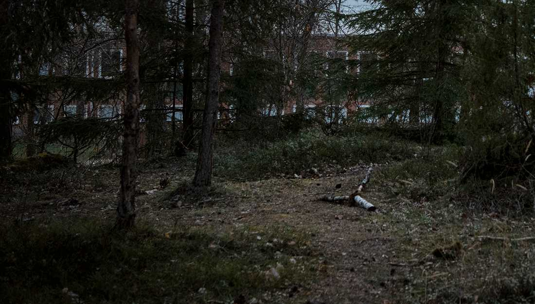 Våldtäkten ska ha ägt rum i Västerås på lördagen.