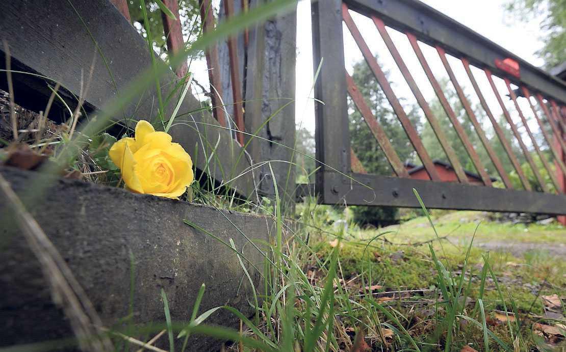 En anhörig lämnade en ros vid grindstolpen.