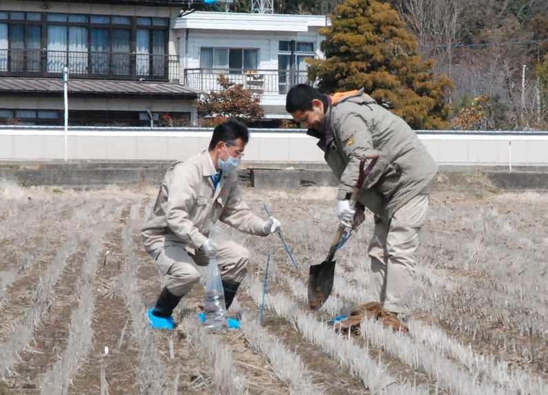 Letar radioaktiva material Inspektörer testar en risodling för radioaktiva material.