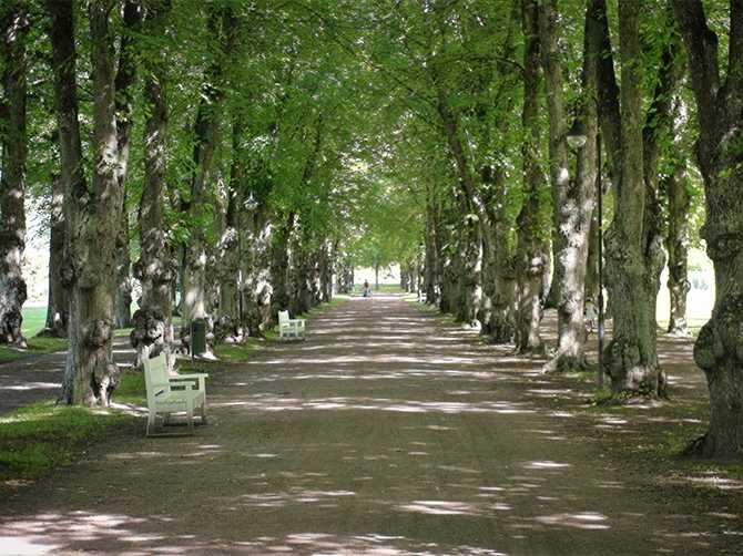 Stadsträdgården i Gävle.