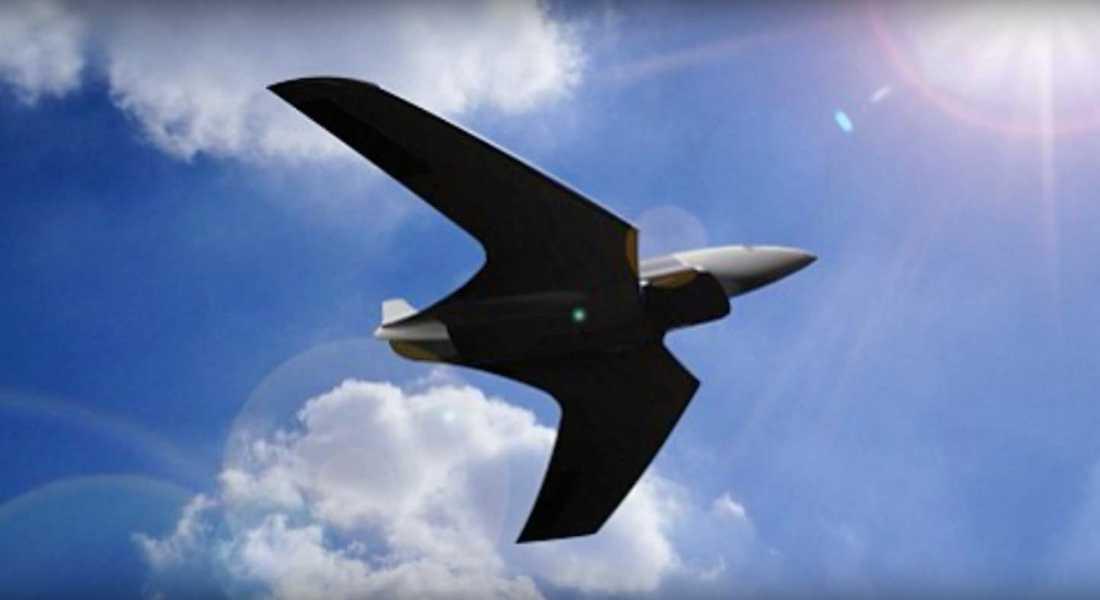 Flygplanet ska kunna bära 10 personer och färdas 20 000 km på under en timme.