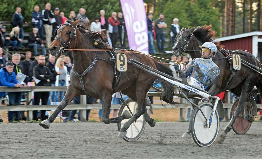 Julia Pellini är en av V75-chanserna på hemmaplan för Magnus Dahlén.