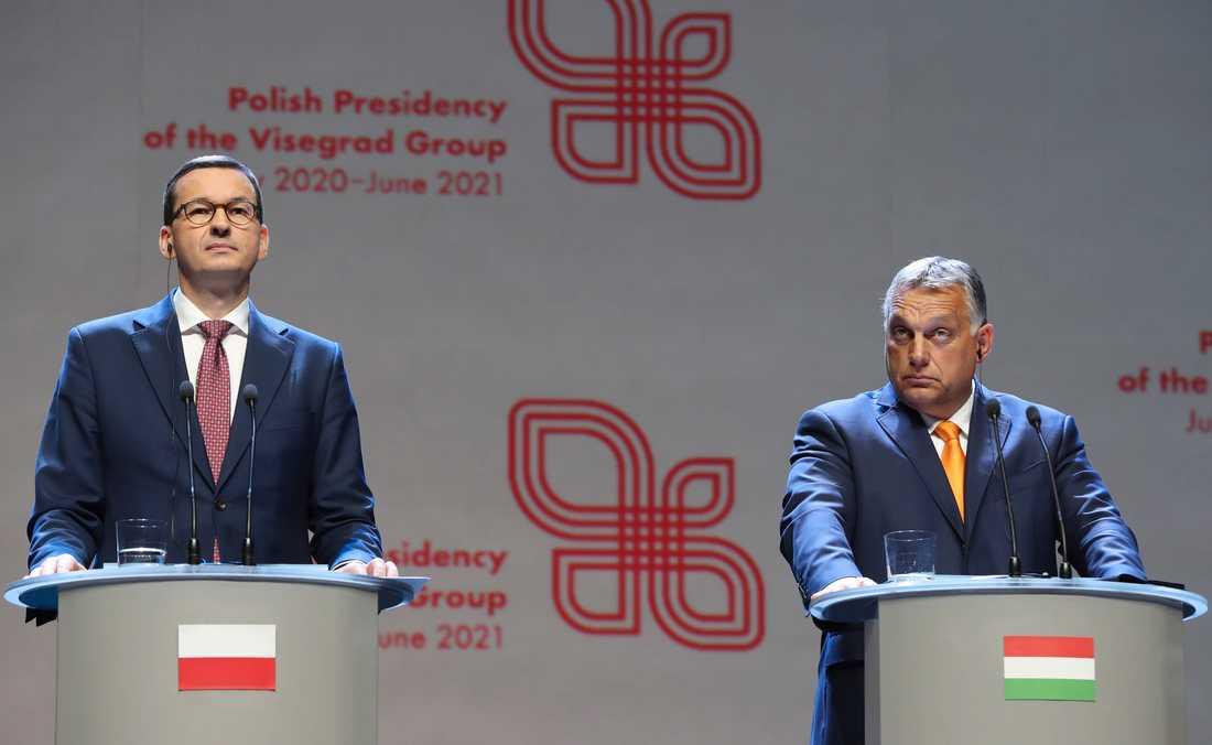 Polens premiärminister Mateusz Morawiecki och Ungerns premiärminister Viktor Orban