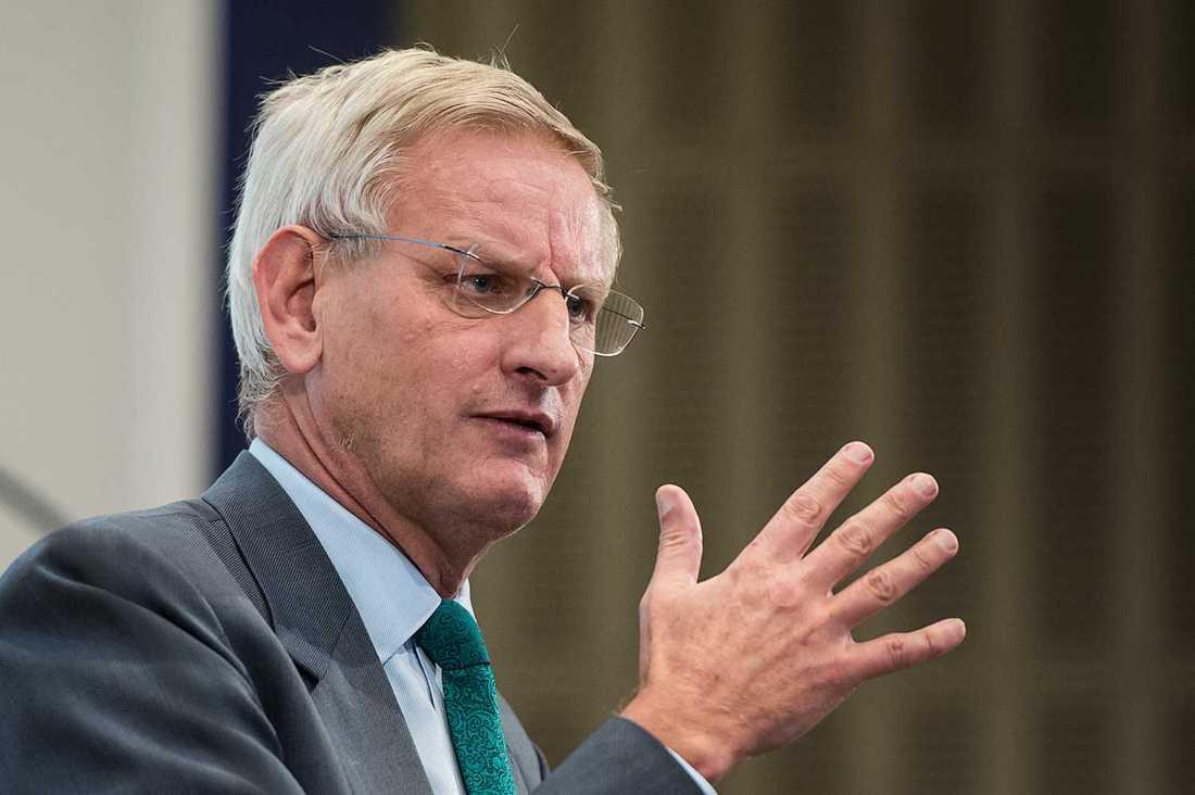 Även Bildt har flera kopplingar till organisationerna.