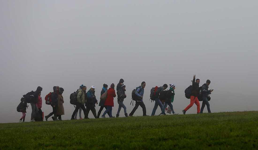 Flyktingar på väg över gränsen från Österrike och Tyskland.