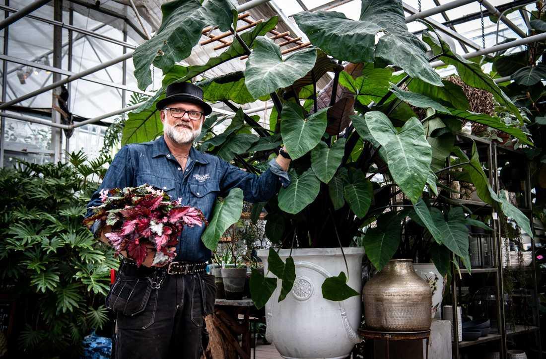 Bosse Rappen berättar om trender och hur du sköter om dina krukväxter.