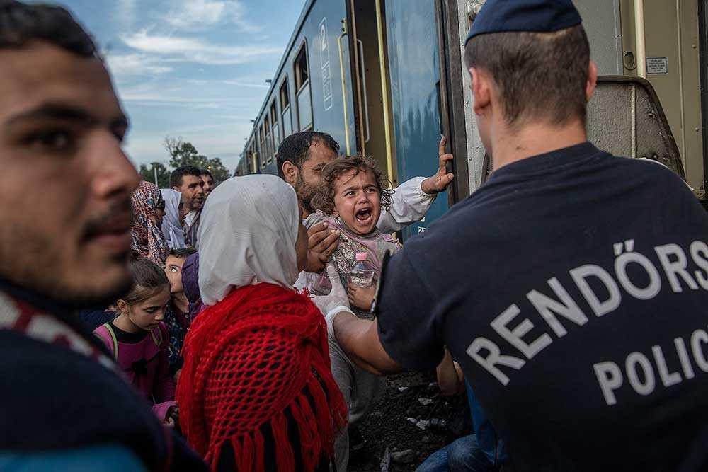 Med buss kördes de som lyckades ta sig över gränsen till tågstationen i Röszke.