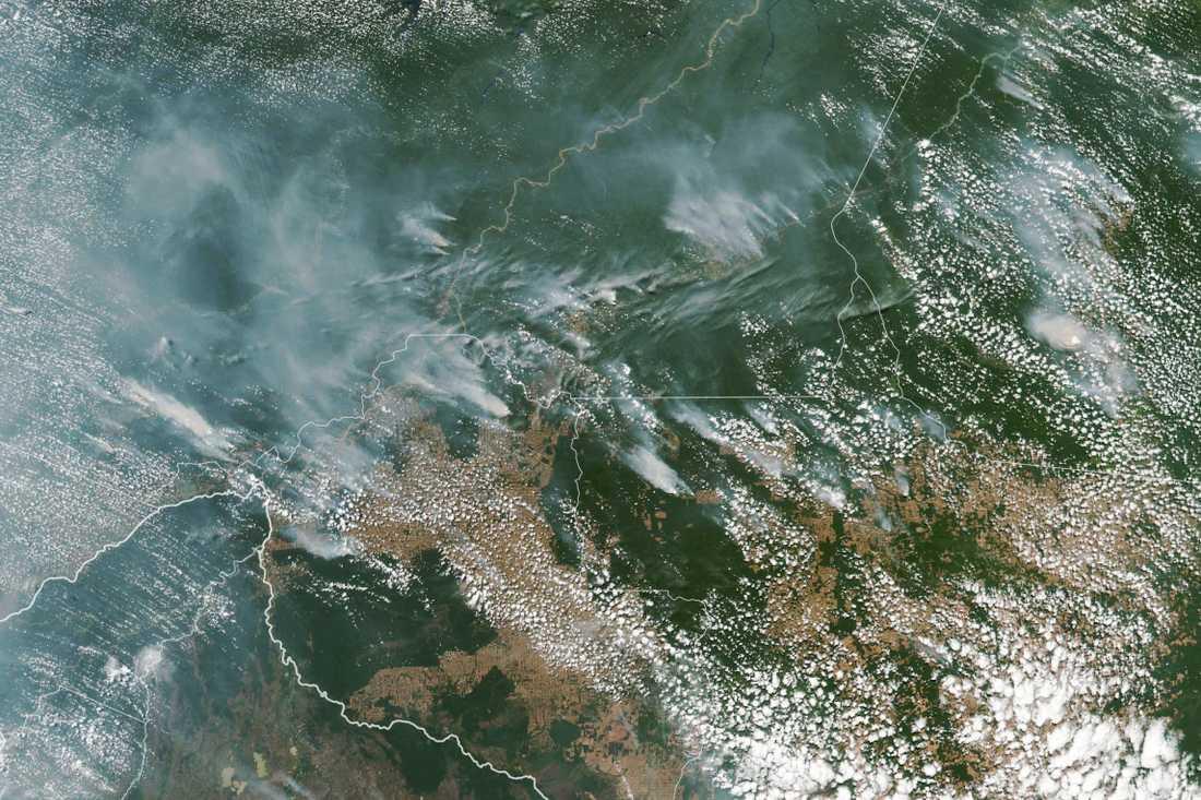 En satellitbild från Nasa visar flera bränder i Amazonas.