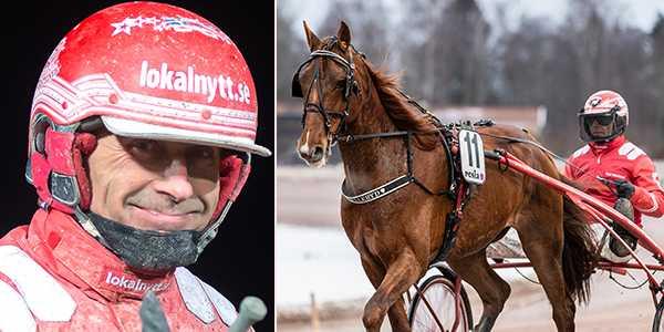 Peter Untersteiner och Love Håleryd är ett skrälltips på V75.