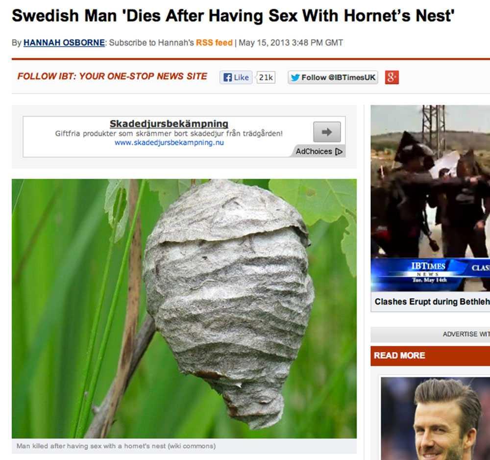 International Business Times svalde 'nyheten' med hull och hår.