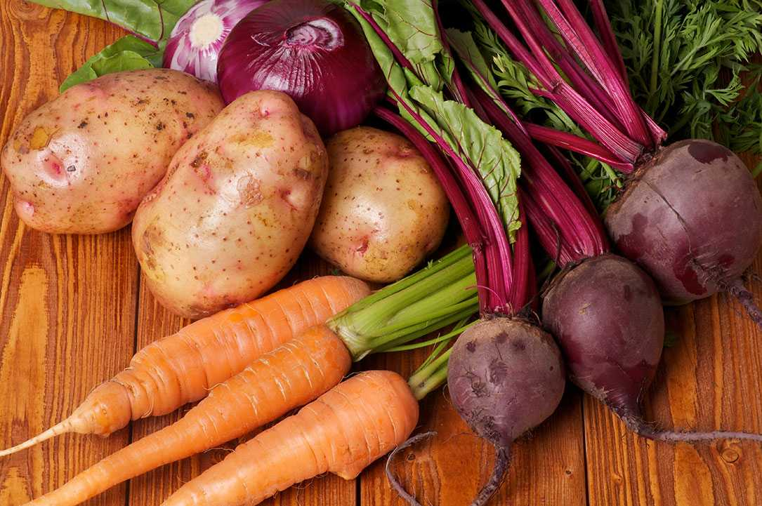 """10. """"Ekologisk mat är nyttigare"""" Falskt  Det finns faktiskt inga entydiga vetenskapliga bevis för att eko-mat är nyttigare än annan mat, åtminstone inte näringsmässigt. Förra året publicerades en studie i tidskriften  Annals of Internal Medicine där forskarna konstaterade att ekologisk mat varken  var hälsosammare eller mer näringsrik  än konventionellt producerad mat."""