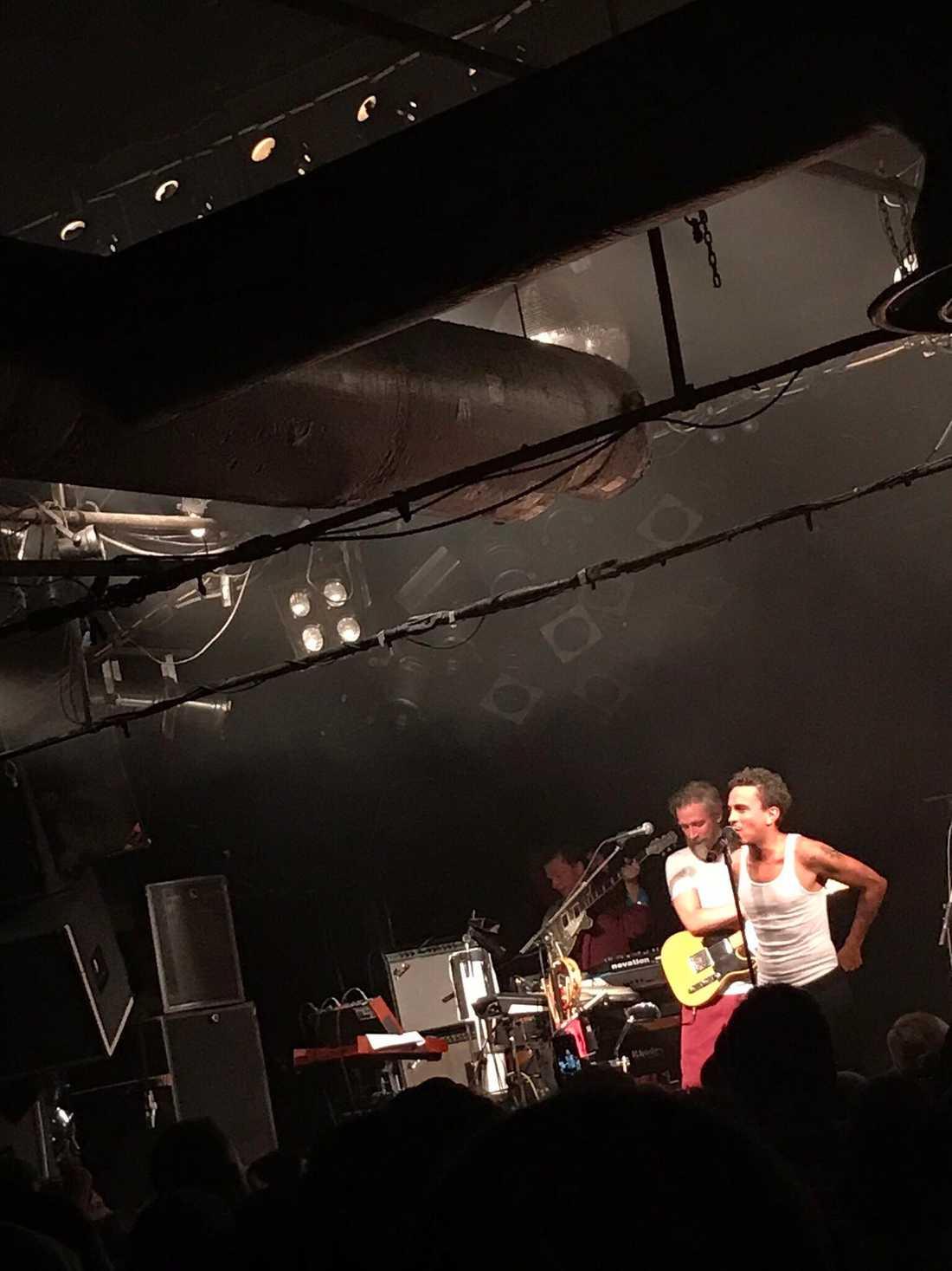 Nallen på Timbuktu-konsert.