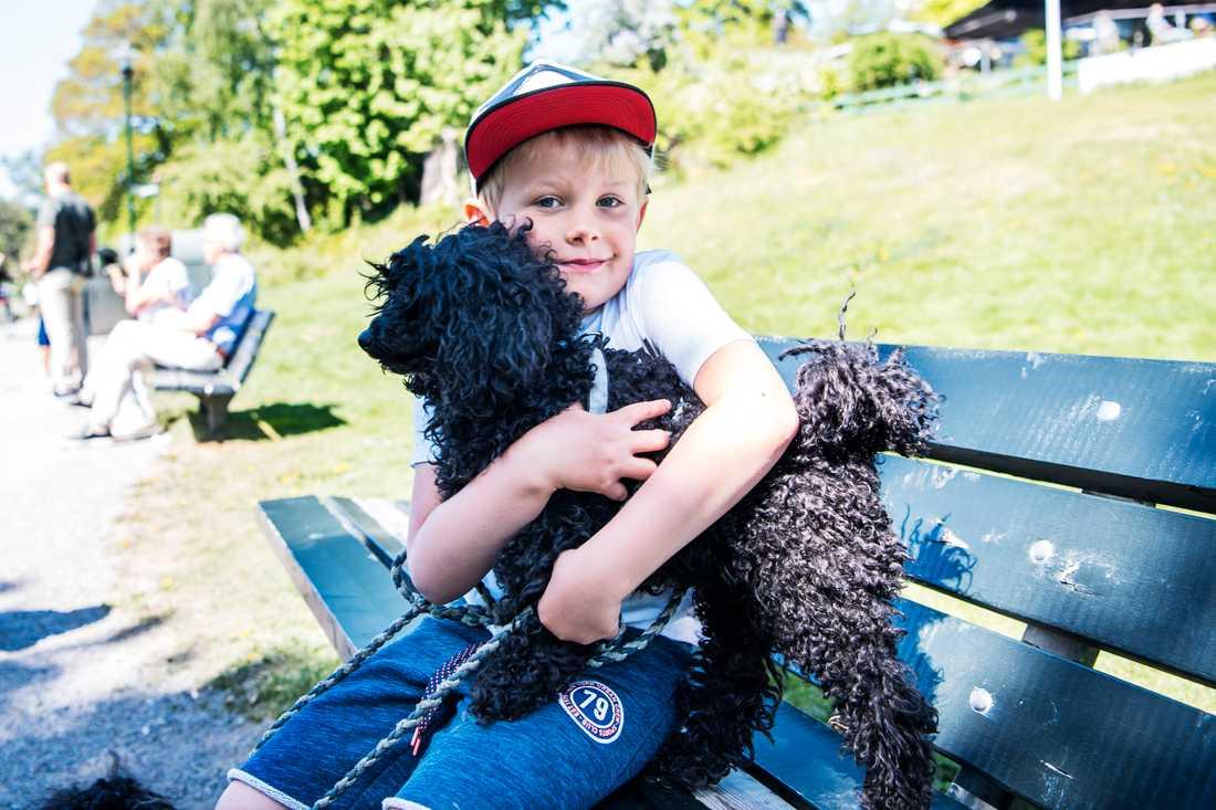 Emil Dahl älskar hundar.