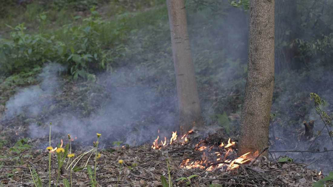 Många gräs- och markbränder tar fart i vårvädret. Bilden är tagen vid ett tidigare tillfälle. Arkivbild.
