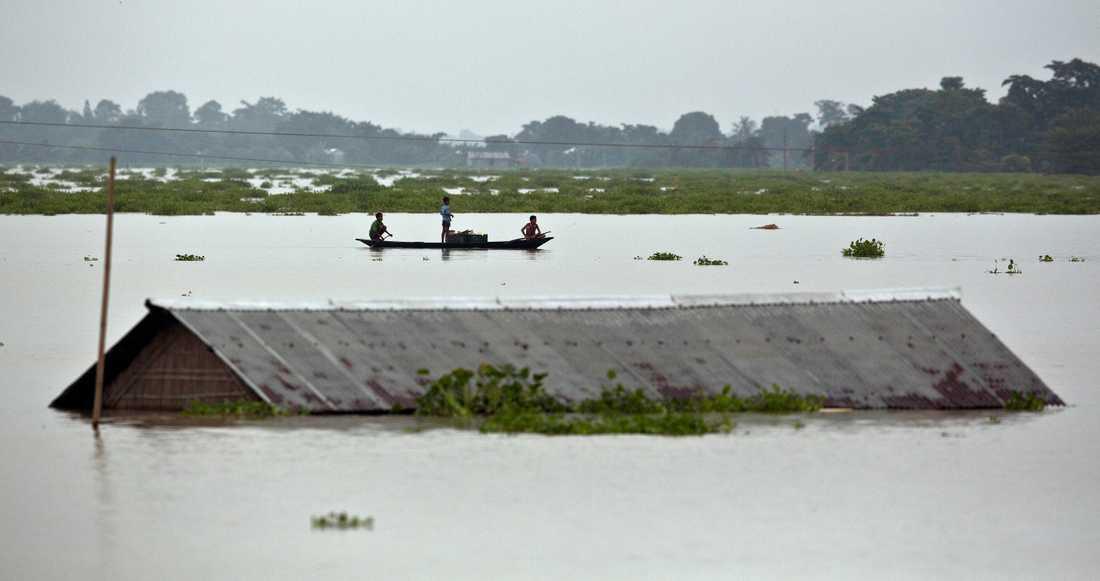 Bybor ror förbi ett hus i östra delstaten Assam i Indien, som drabbats hårt av regnen.