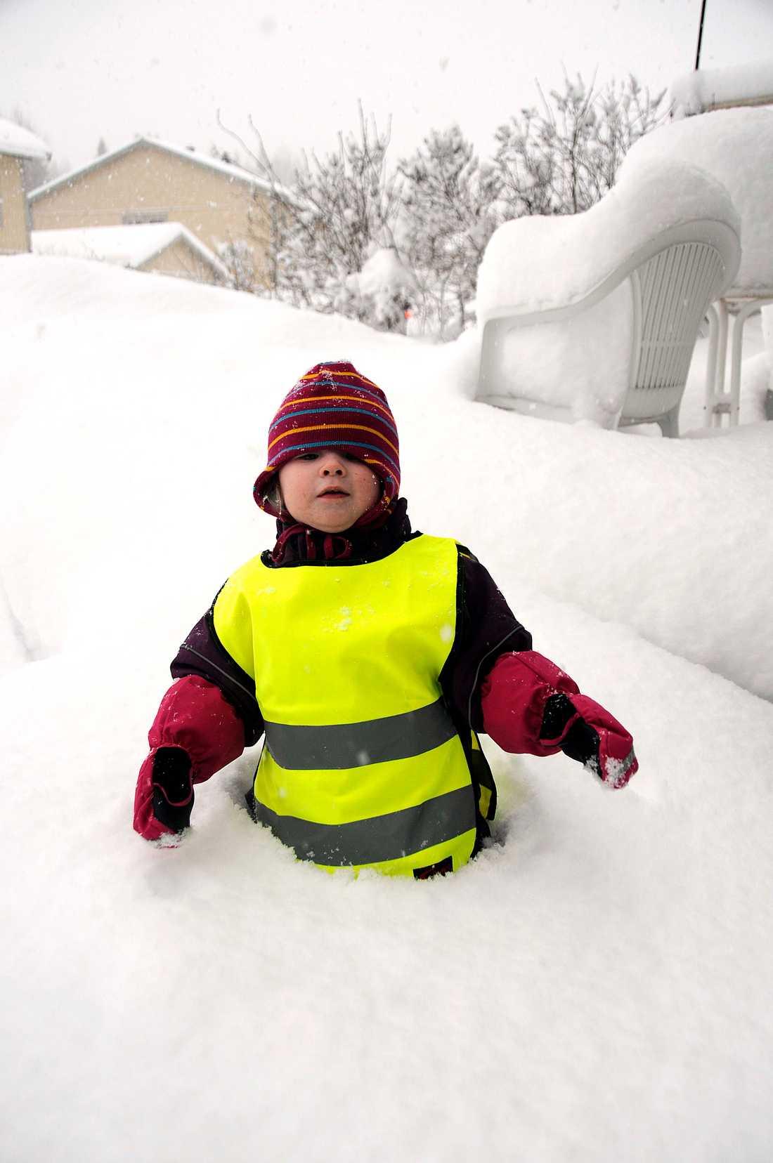 Under natten så har det fallit 50 cm i Timrå, här hjälper Mira 2 år pappa att skotta snö.