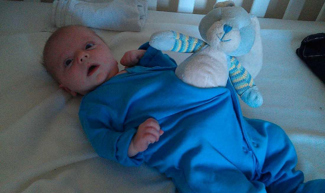 (1) Arthur, 6,5 månad gammal, i den amerikanska science fiction-skräckfilmen från 1979.