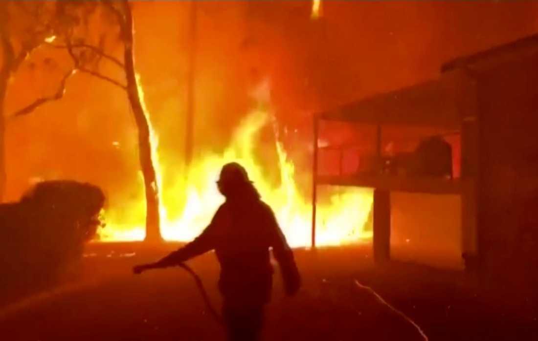 En brand i den australiska delstaten New South Wales. Bilden är från i december 2019.